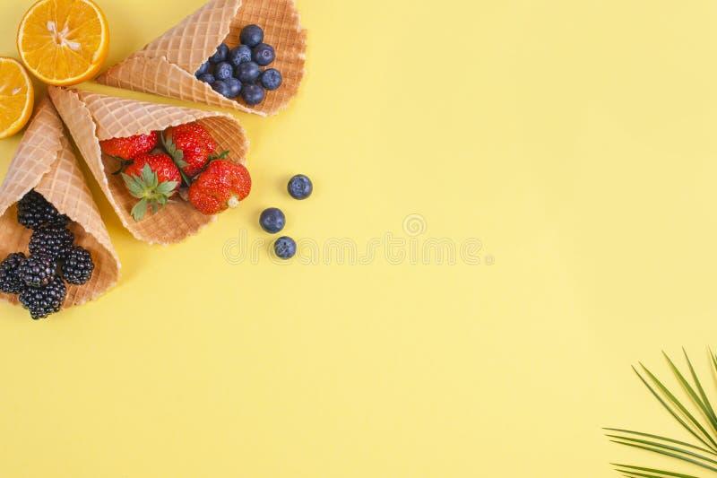 Tropische vruchten en bessen op een gele achtergrond Vrije ruimte voor tekst Vakantie en ontspanning De vlakke exemplaarruimte, l stock foto