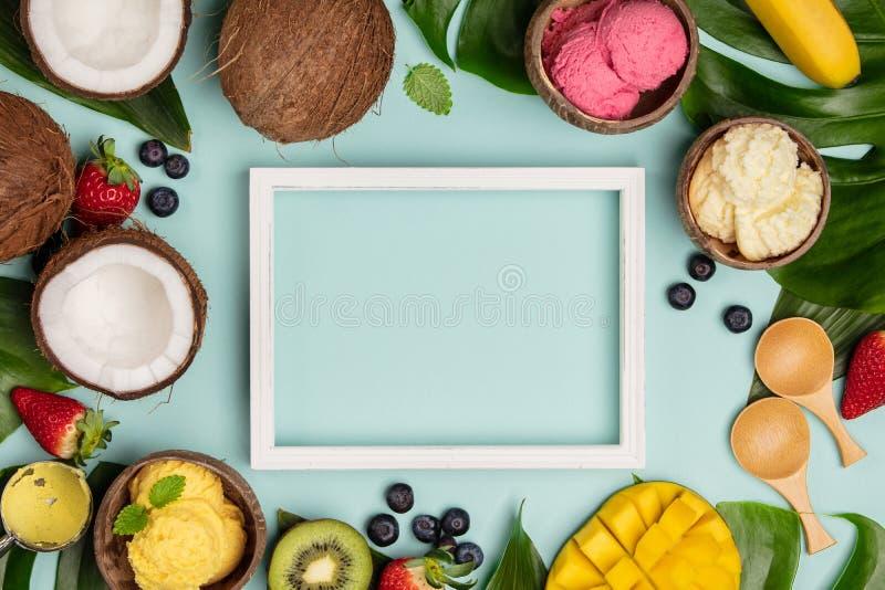 Tropische vruchten en installaties met verscheidenheid van roomijs in kokosnotenshells stock foto's