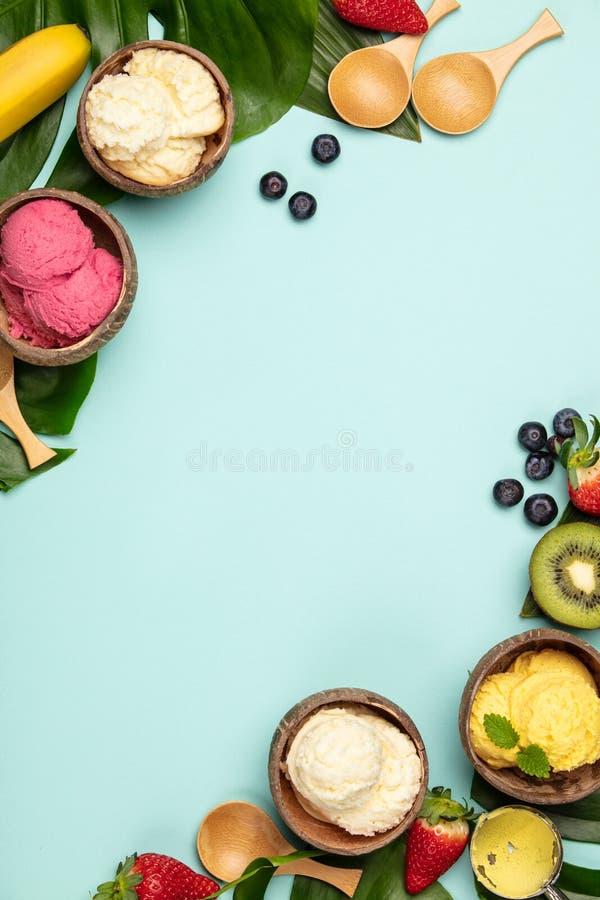 Tropische vruchten en installaties met verscheidenheid van roomijs in kokosnotenshells stock foto