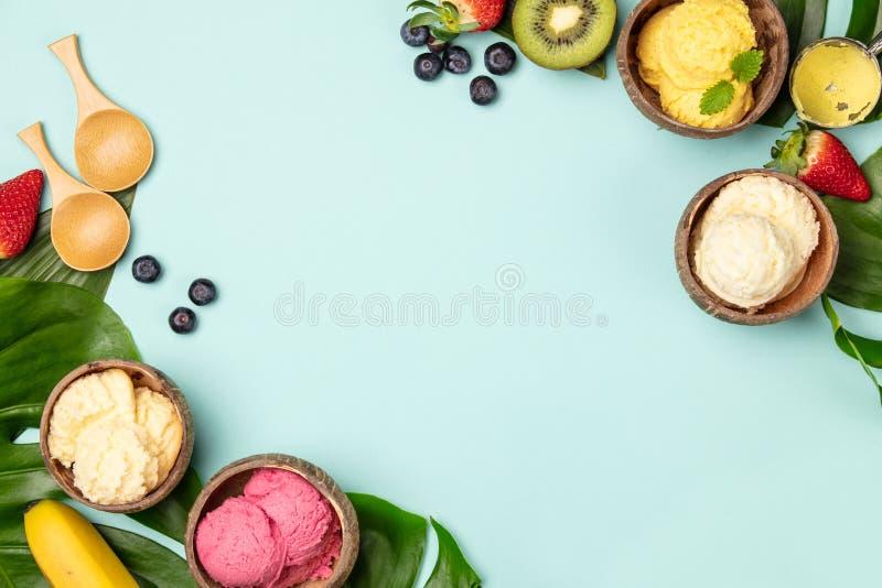 Tropische vruchten en installaties met verscheidenheid van roomijs in kokosnotenshells royalty-vrije stock foto's