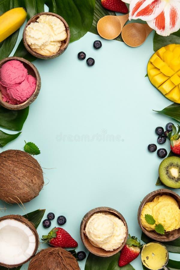 Tropische vruchten en installaties met verscheidenheid van roomijs in kokosnotenshells stock afbeelding