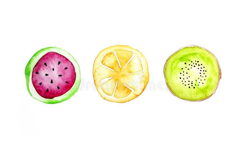 Tropische vruchten watercolour verf op document achtergrond stock illustratie