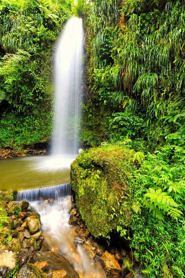Tropische waterval royalty-vrije stock foto's
