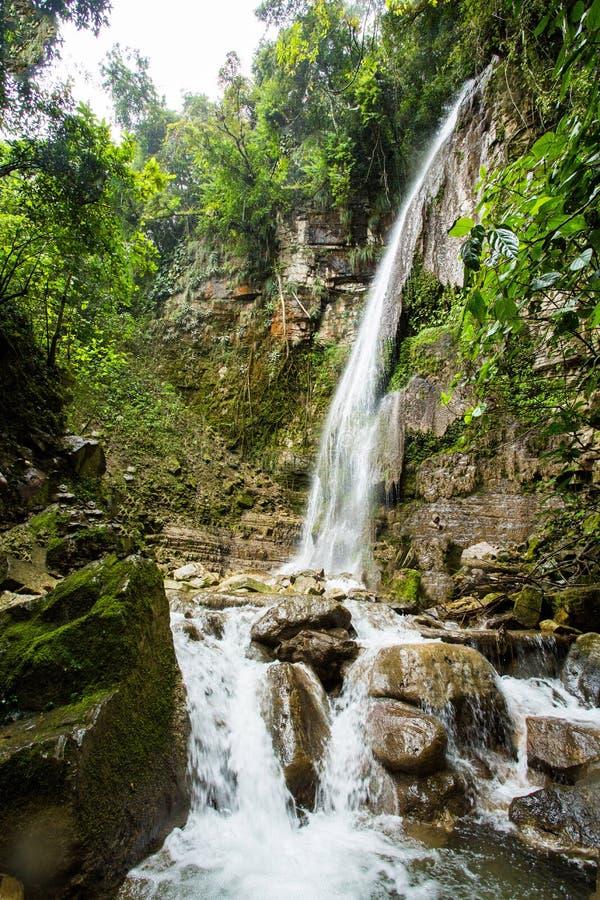 Tropische waterval bij Xilitla-ruïnes royalty-vrije stock afbeelding