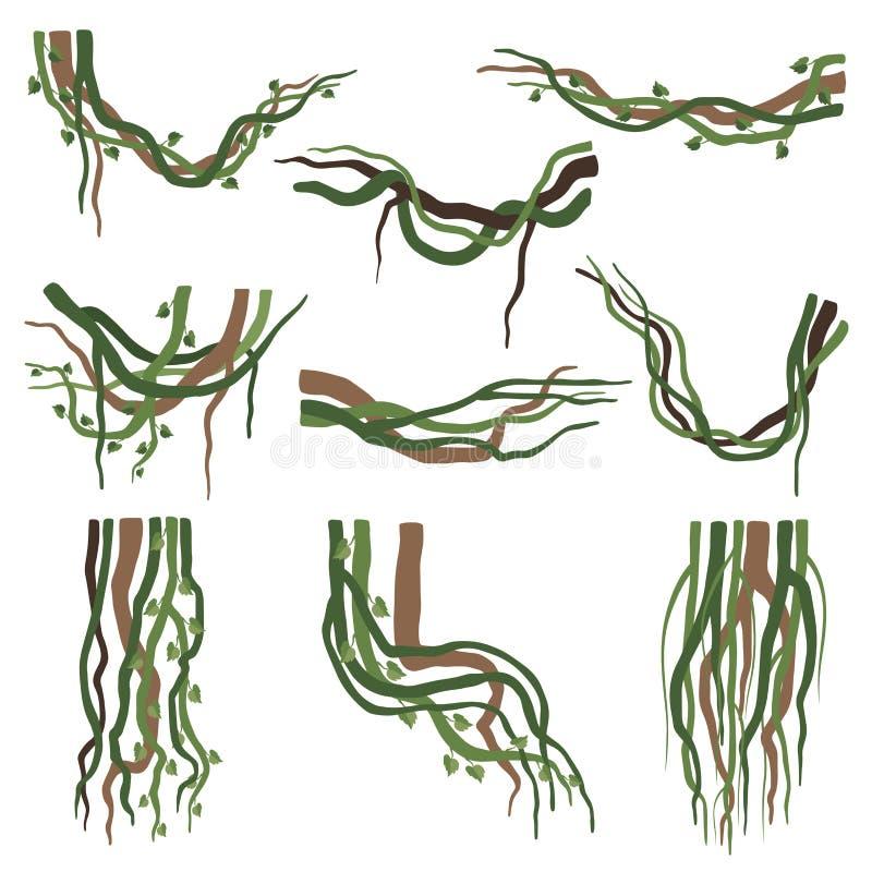 Tropische Wicklung Liana Branches Set, Dschungel-Betriebsdekorative Elemente, Regenwald Flora Vector Illustration lizenzfreie abbildung
