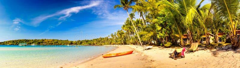 Tropische zandige strand overwoekerde groene palm met duidelijk zeewater op blauwe hemel als achtergrond royalty-vrije stock foto's