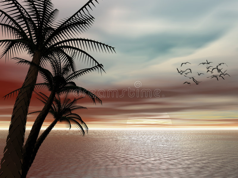 Tropische zonsondergang. vector illustratie