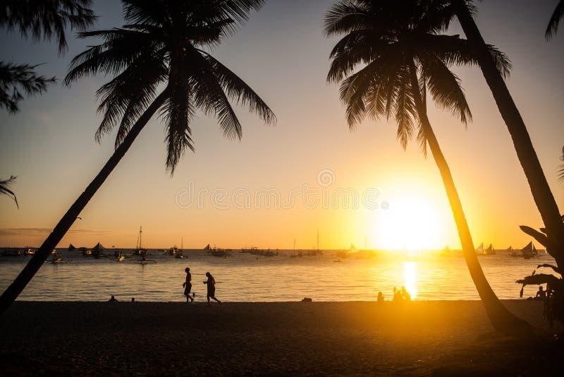 Tropische Zonsondergang stock foto's