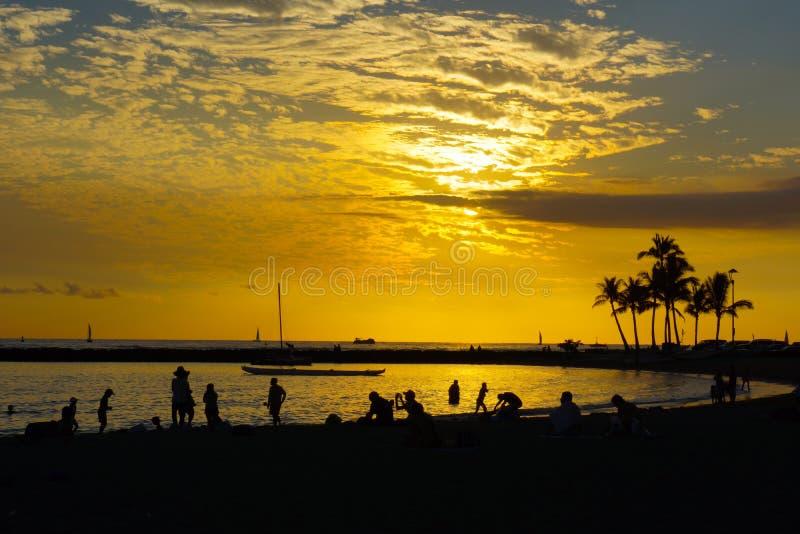 Tropische Zonsondergang Gouden Hemel royalty-vrije stock fotografie