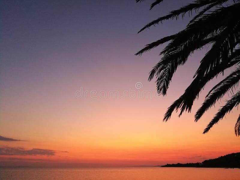Tropische zonsondergang op overzeese horizon stock afbeelding