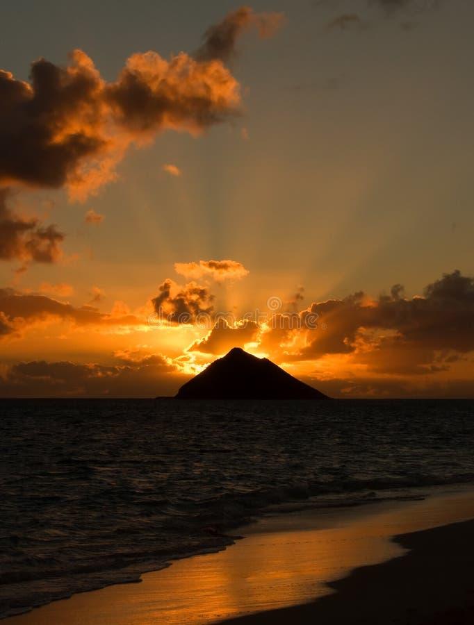 Tropische zonsopgang royalty-vrije stock afbeeldingen