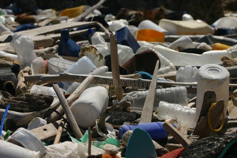 Tropischer Abfall stockbilder