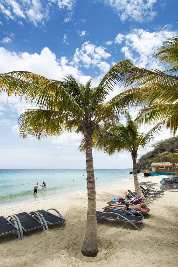 Tropischer Caribean-Strand Curaçao lizenzfreies stockbild
