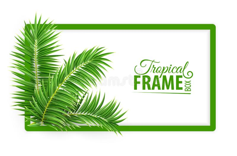 Tropischer Fahnenrahmen Entwurf Gr?ne Palmbl?tter Auch im corel abgehobenen Betrag lizenzfreie abbildung