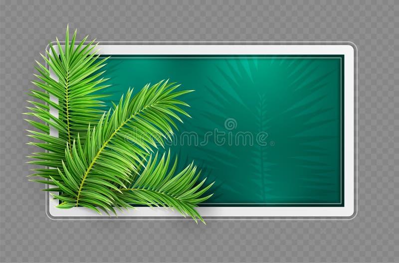 Tropischer Fahnenrahmen Entwurf Gr?ne Palmbl?tter Auch im corel abgehobenen Betrag vektor abbildung