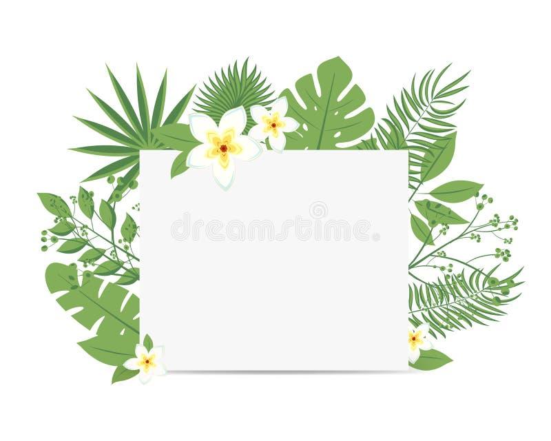 Tropischer Flieger mit Palmblättern und exotischen Blumen Weiße Blattrahmenillustration mit Blumen Auch im corel abgehobenen Betr vektor abbildung