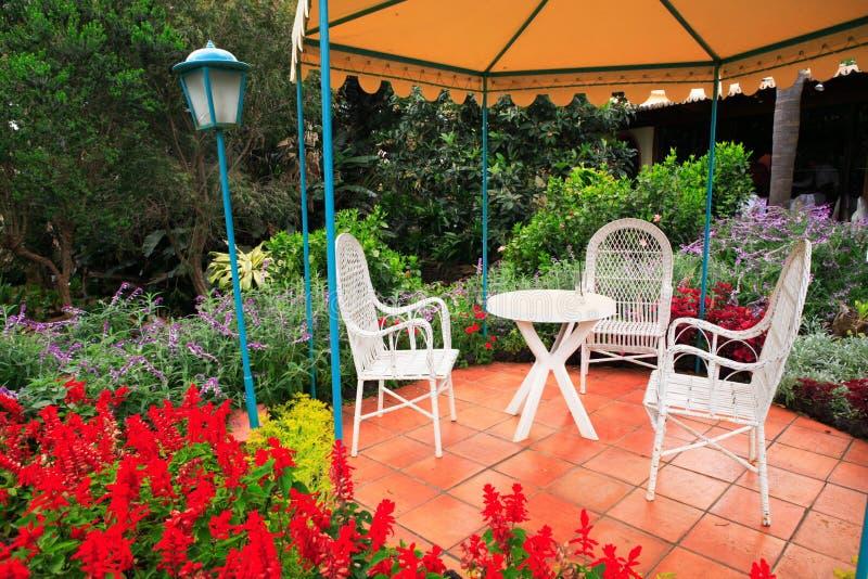 Tropischer Garten stockbild