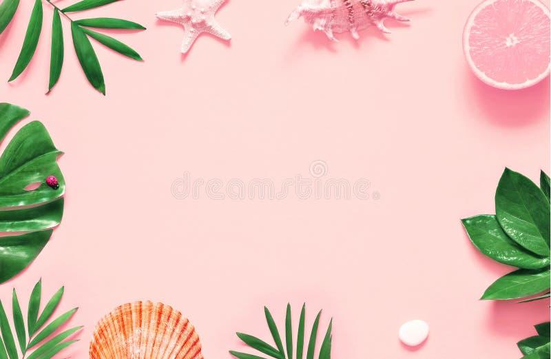 Tropischer Hintergrund Palmeniederlassungen mit Starfish und Muschel auf rosa Hintergrund Reise stockfotos