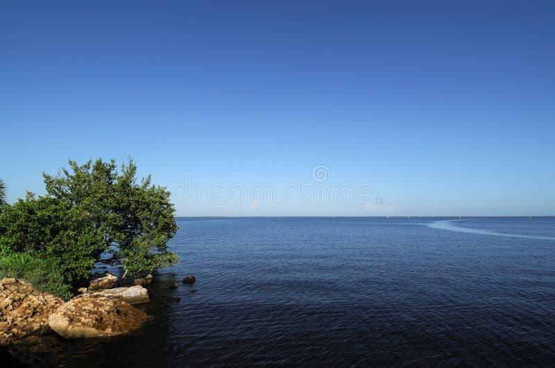 Tropischer Horizont horizontal gelassen lizenzfreie stockfotos