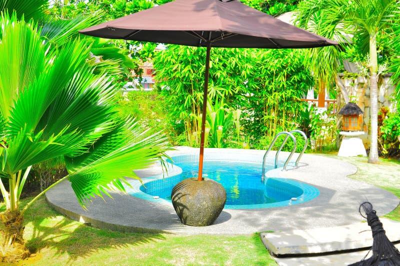Tropischer Luxuxswimmingpool Stockbilder