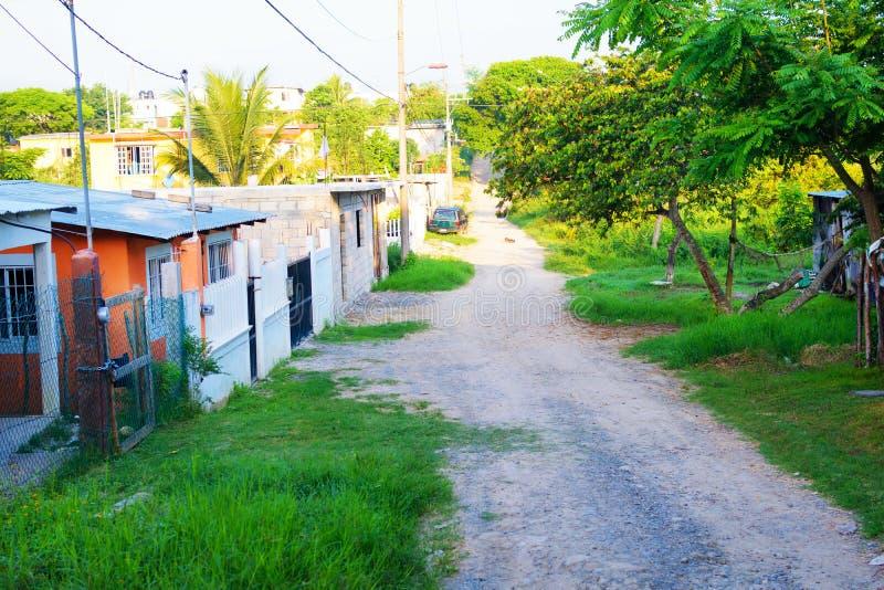 Tropischer Mexikaner Colonia lizenzfreie stockfotografie