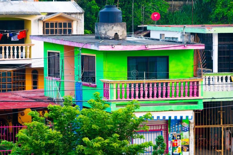 Tropischer Mexikaner Colonia stockfotografie