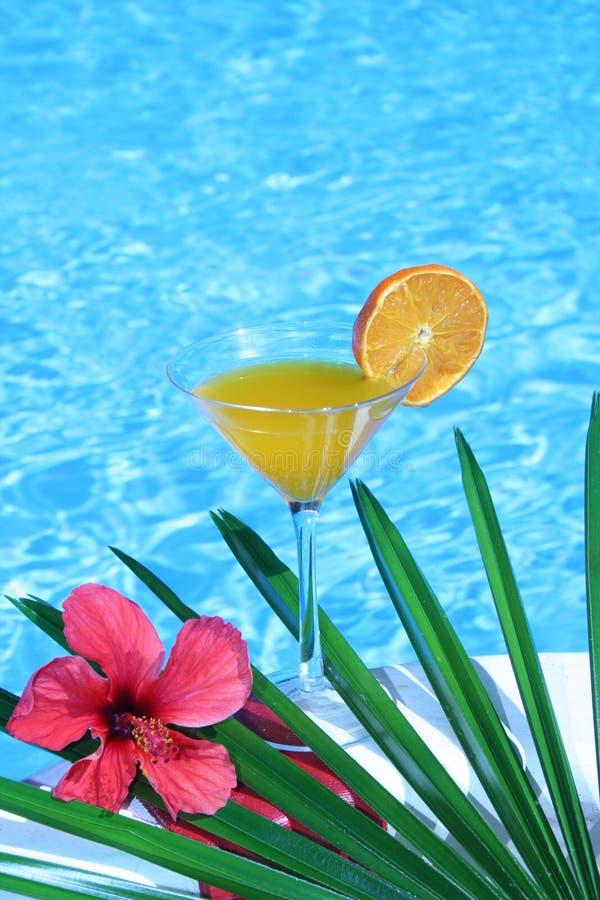 Tropischer Orangensaft lizenzfreies stockbild