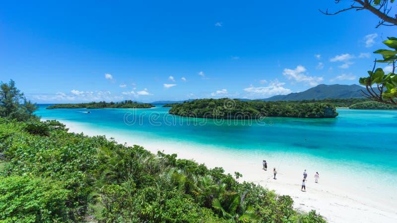 Tropischer Paradiesstrand mit klarem blauem Lagunenwasser, Ishigaki-Insel, Okinawa, Japan lizenzfreie stockfotos