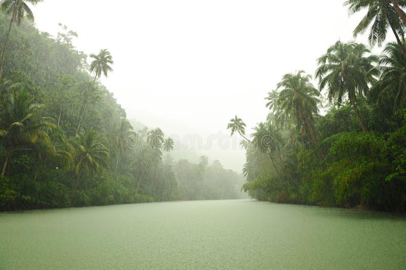 Tropischer Regen über Fluss stockbilder