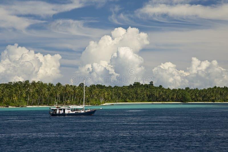 Tropischer Reiseflug lizenzfreies stockbild