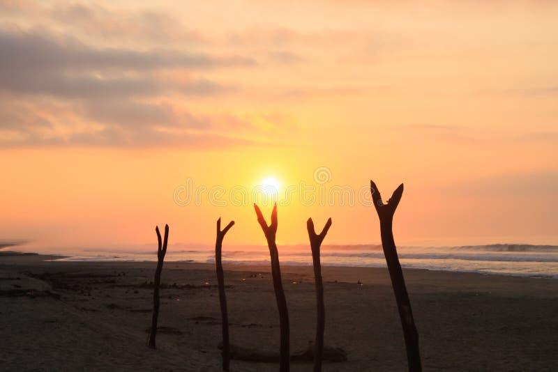 Tropischer Sonnenaufgang über Fischernetz-trocknenden Beiträgen auf Pazifischem Ozean lizenzfreies stockfoto