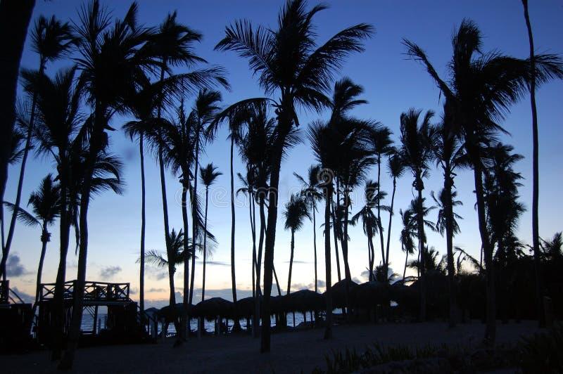 Tropischer Sonnenaufgang auf Luxusstrand lizenzfreie stockfotografie