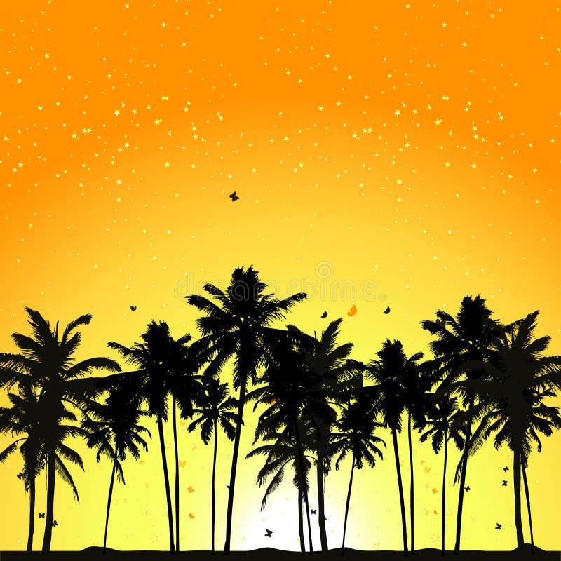 Tropischer Sonnenuntergang, Palmen vektor abbildung