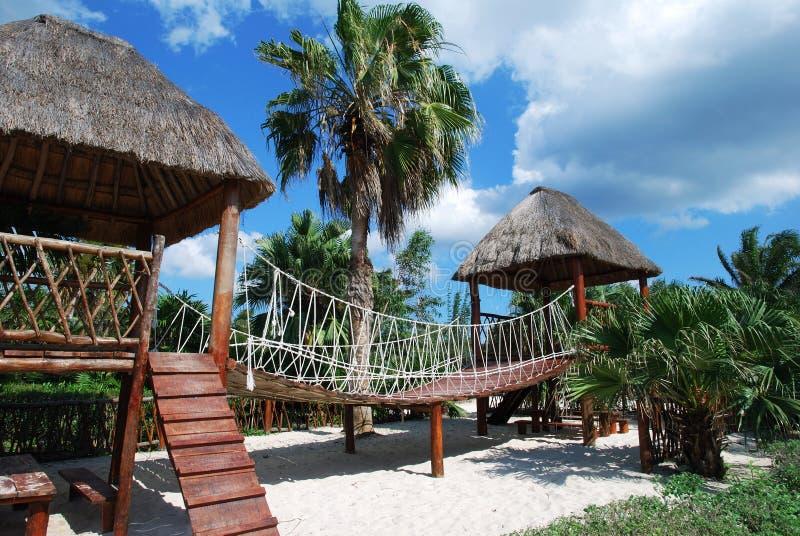 Tropischer Spielplatz stockbilder