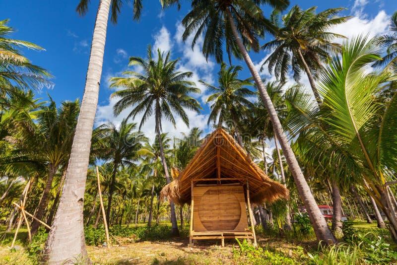 Download Tropischer Strand stockfoto. Bild von szene, hintergrund - 90227780