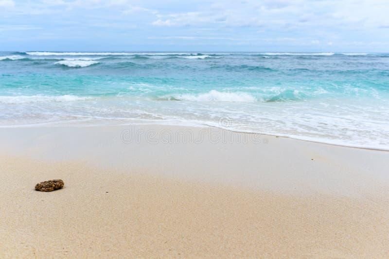 Download Tropischer Strand In Bali, Indonesien Stockfoto - Bild von leuchte, reise: 106802984