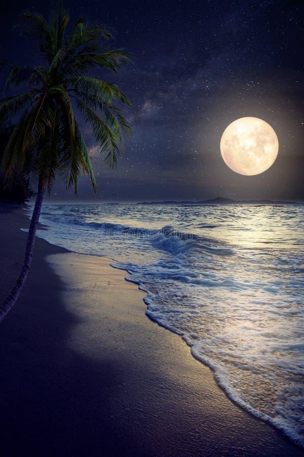 Tropischer Strand der schönen Fantasie mit Milchstraßestern in den nächtlichen Himmeln stockfotografie
