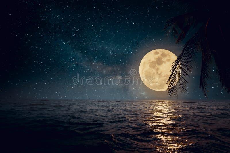 Tropischer Strand der schönen Fantasie mit Stern und Vollmond in den nächtlichen Himmeln stockbild