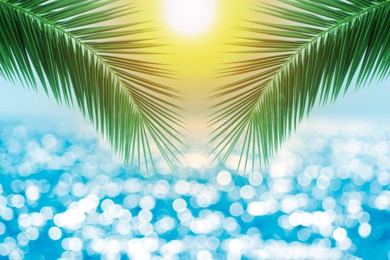 Tropischer Strand mit Seestern auf Sand, Sommerferienhintergrund Reisen Sie und setzen Sie Ferien, freien Raum für Text auf den S lizenzfreie abbildung
