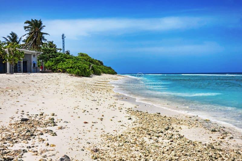 Tropischer Strand mit weißem Korallensand in der maledivischen Insel stockfotografie