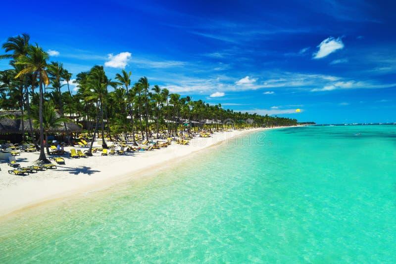 Tropischer Strand in Punta Cana, Dominikanische Republik Vogelperspektive über exotischem Erholungsort Parasailing sunbathing lizenzfreies stockbild