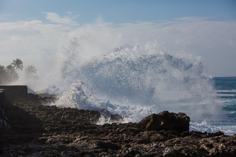 Tropischer Strandbruch, Meereswoge Steinküstenlinie, Wasser zerquetschend stockfotografie