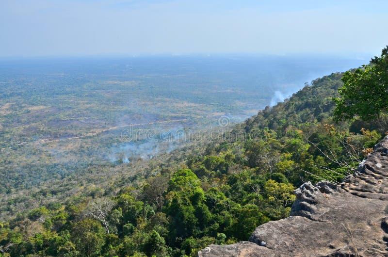 Tropischer Wald mit Rauche des Feuers lizenzfreie stockfotos