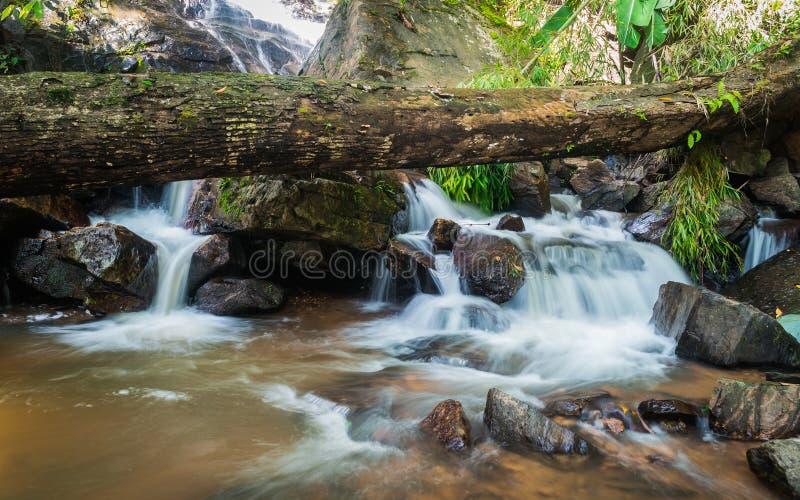Tropischer Wasserfall lizenzfreie stockbilder
