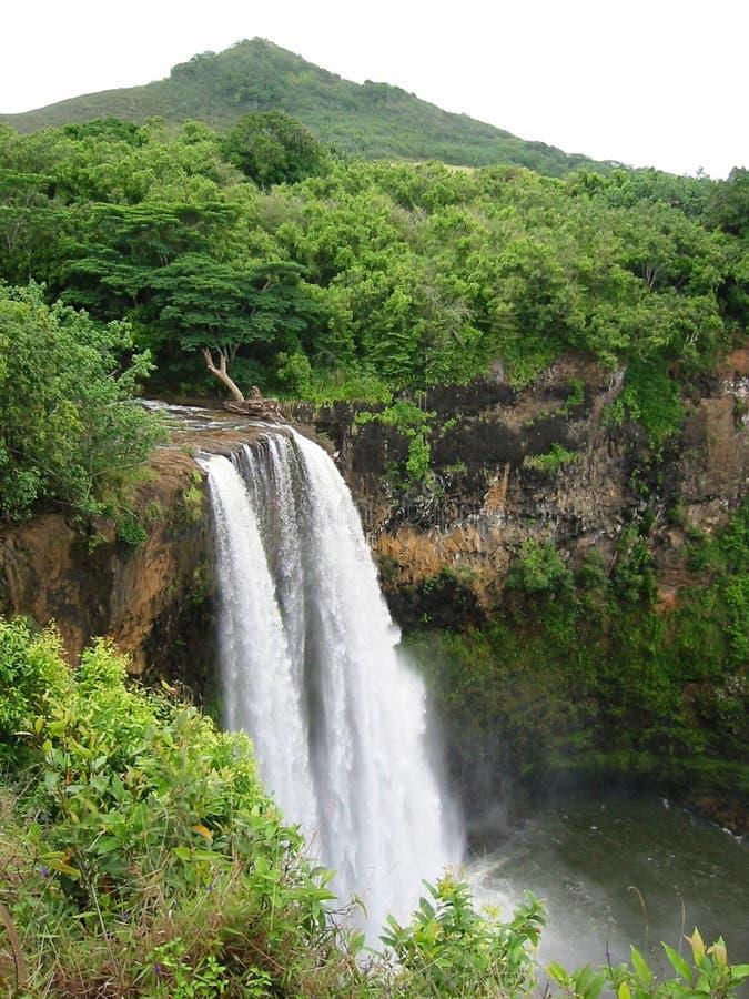 Tropischer Wasserfall stockbild