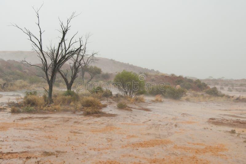 Tropischer Wirbelsturm stockfoto