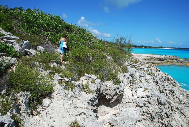 Tropisches Abenteuer stockfotografie