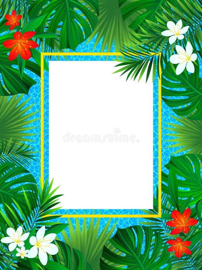 Tropisches Blumenfeld Tropische Plakatvektorillustration Hintergrund mit exotischer Anlage, Palmblatt, Swimmingpoolbeschaffenheit lizenzfreie abbildung