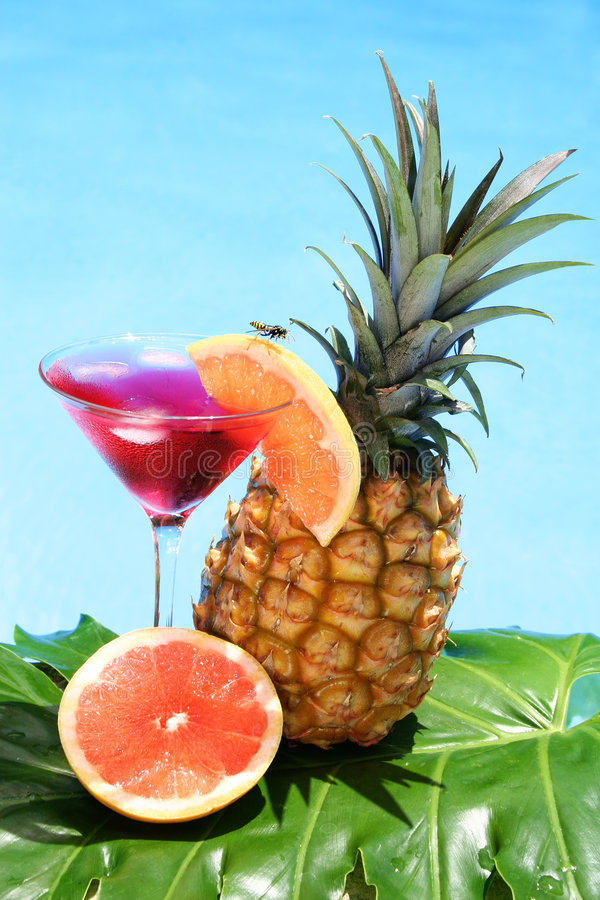 Tropisches Cocktail lizenzfreies stockbild