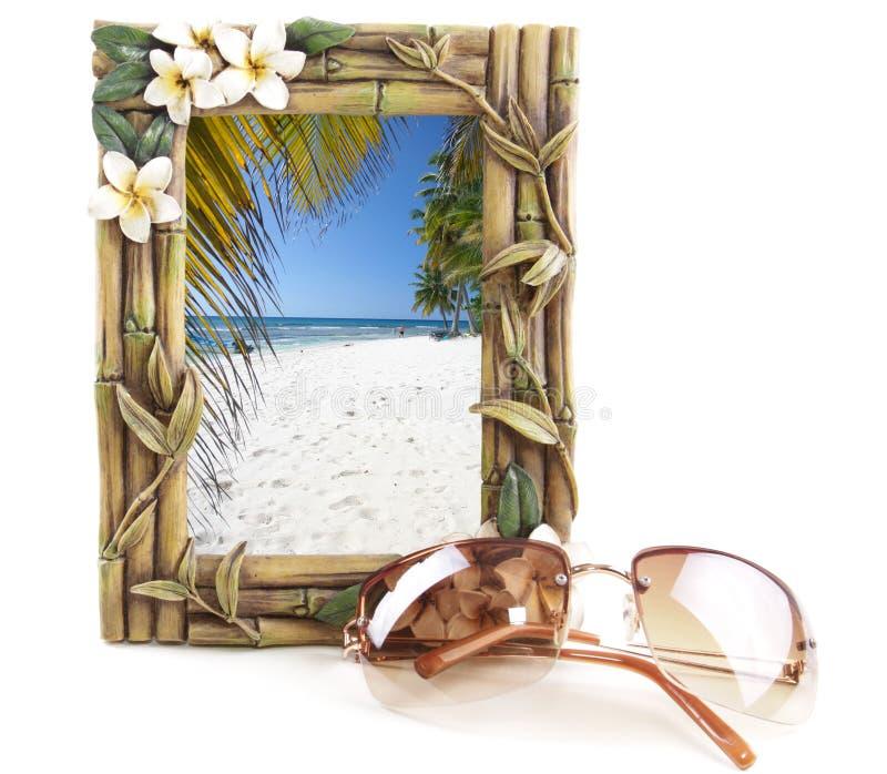Tropisches Feld mit Strand lizenzfreie stockbilder